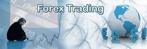 Forex Trading Terminology